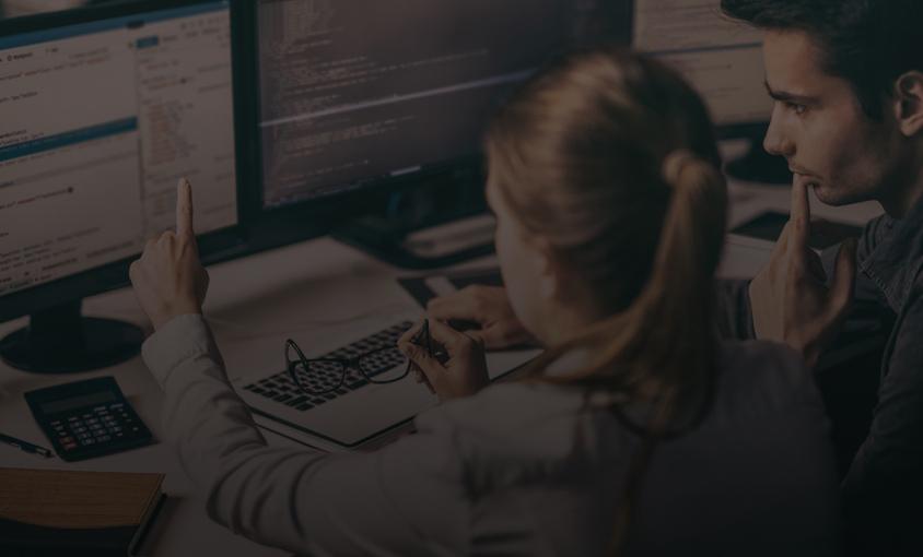 Software & Web Development